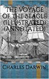 Image of The Voyage of the Beagle (Illustrated) (Annotated)