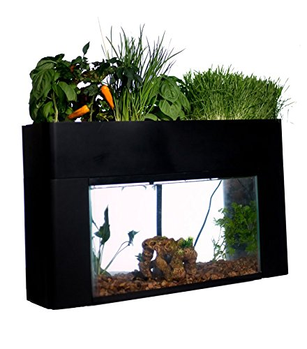 New aquasprouts garden self sustaining aquarium garden for Fish tank garden