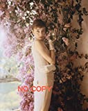 大きな写真、オードリー・ヘップバーン、花々の下で