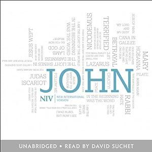 NIV Gospel of John Audiobook