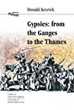 Donald Kenrick Gypsies: From the Ganges to the Thames (Interface Collection)