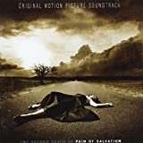 The Second Death Of By Pain Of Salvation (2009-10-12)