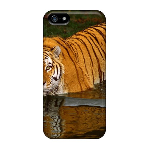 Faddish Phone Swimming Tiger Case For Iphone 5/5S / Perfect Case Cover