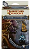 Player's Handbook Heroes: Series 2 - Divine Characters 3: A D&D Miniatures Accessory (D&D Miniatures Product)