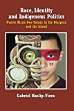 img - for Race, Identity and Indigenous Politics:: Puerto Rican Neo-Tainos in the Diaspora and the Island book / textbook / text book