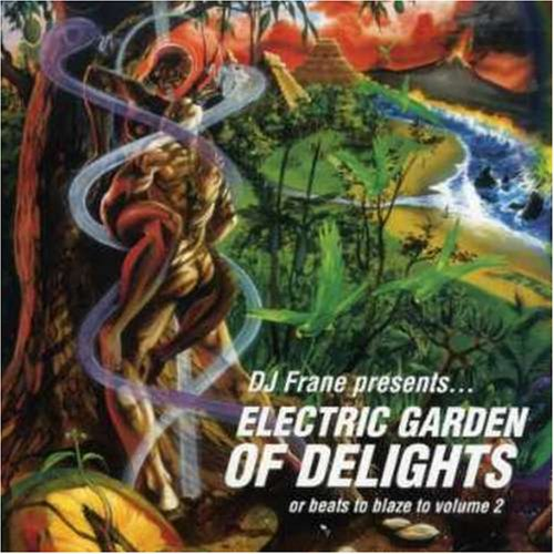 DJ FRANE - Electric Garden of Delights - LP