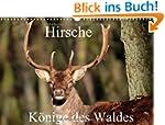 Hirsche - K�nige des Waldes/Geburtsta...