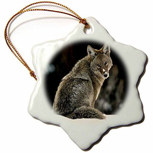 3drose Coyote Snowflake Porcelain Ornament, 3-Inch