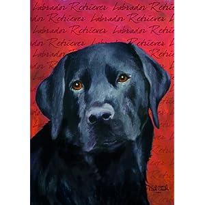 Black Dog Music Supplies