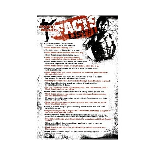 Amazon.com: (24x36) Chuck Norris Facts (List #1) Art Poster Print