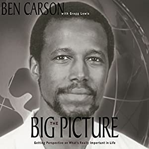 The Big Picture Audiobook