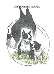 Boston Terrier - Trio Image by Cindy Farmer