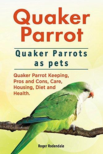 quaker-parrot-quaker-parrots-as-pets-quaker-parrot-keeping-pros-and-cons-care-housing-diet-and-healt