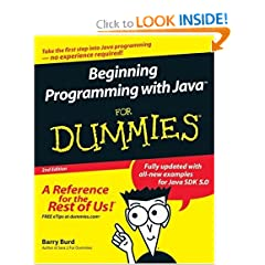 Beginning Programming with Java For Dummies E Book H33T 1981CamaroZ28 preview 0
