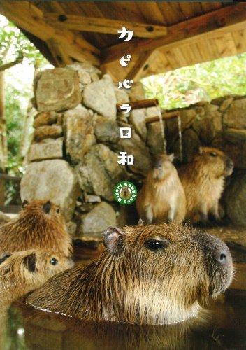 カピバラ日和 [DVD]