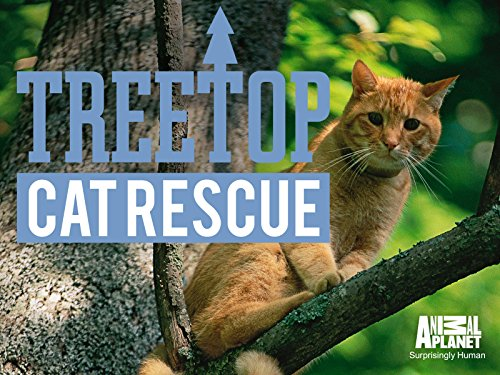 Treetop Cat Rescue Season 1