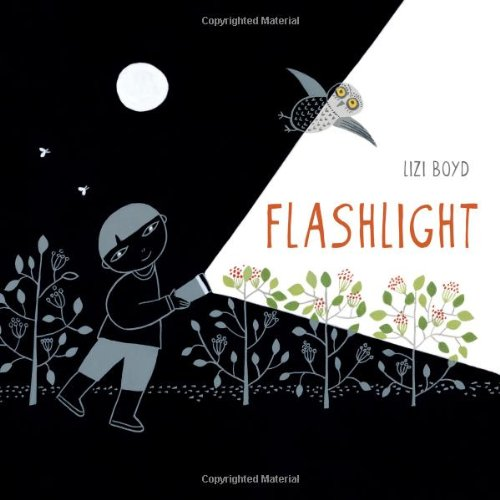 Flashlight: Junior Library Guild Selection