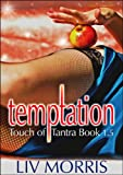 Temptation (A Touch of Tantra Novella)