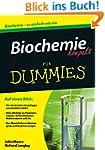 Biochemie kompakt f�r Dummies