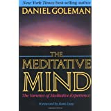 The Meditative Mind: The Varieties of Meditative Experience