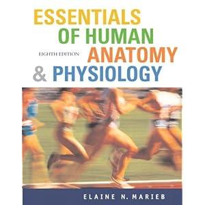 essentials of human anatomy and physiology elaine marieb pdf