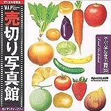 売切り写真館 VIPシリーズ Vol.23 スーパーリアルイラスト/食材