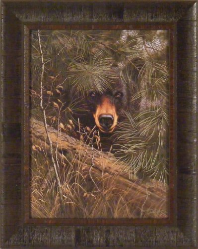 The Watcher by Derk Hansen 17x21 Black Bear Hiding In Pine Trees Framed Art Print Wall Décor Picture (Framed Bear Art compare prices)