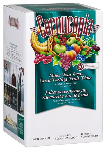 Cornucopia Fruit Wine Making Kit, Raspberry Merlot,