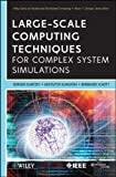 Large-Scale Computing Techniques for Complex System Simulations