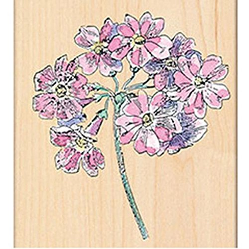 Penny Black 311885 Auriculas Mounted Rubber Stamp, 3 by 3.25-Inch