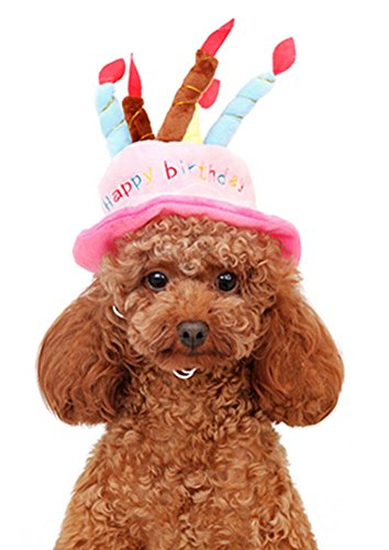 CHAMPURE Pet Happy Birthday Hat For Dogs And Cats With Cute Cake Candles Pink