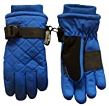 Nice Caps Boys Thinsulate and Waterproof Quilted Ski Glove (2-4yrs, royal/black)