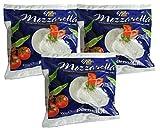 イタリア産 パルマラット社モッツァレラチーズ 100g×3個セット