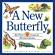 New Butterfly, A (My First Look at)