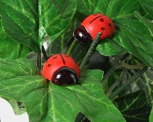 100 ladybugs