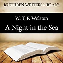 A Night in the Sea (       UNABRIDGED) by W. T. P. Wolston Narrated by Stuart Packer