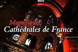 echange, troc Sylvain Sonnet, Elsa Nadal - Magnifiques Cathédrales de France