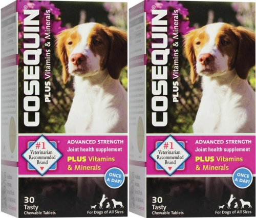 Cosequin Advanced Strength with vitamins & minerals 30 count x 2 PK (Cosequin Advanced Strength compare prices)