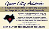 Queen City Animals Flea Controlling Capsules For Large Dogs 46 - 125 Pounds. 12 Monthly Beef Flavored 410 mg Lufenuron Capsules Controls Flea Eggs And Larvae For Your Dog for a Full Year. The Same Active Ingredient As The Major National Brand. (Not For Little Dogs)
