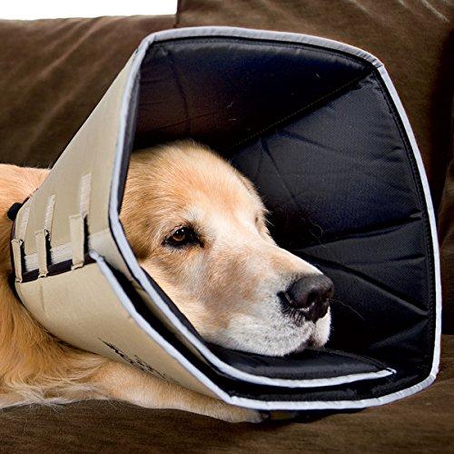 Comfy Cone E Collar For Dogs