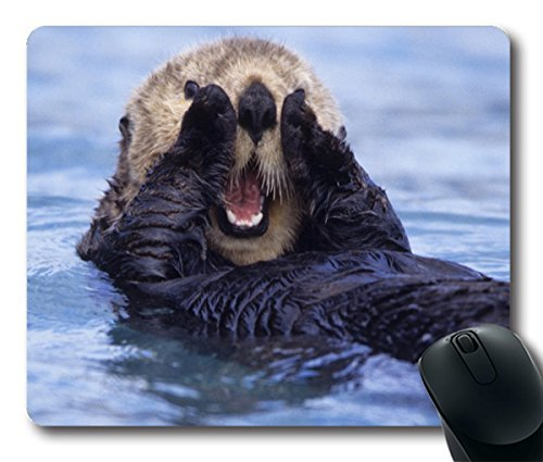 California-Sea-Otter-Personalized-Style-042401-Custom-Oblong-Gaming-Mousepad-Standard-Size-250mm200mm3mm-Mouse-Pad