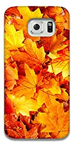 The Racoon Lean Autumn Beauty hard plastic printed back case / cover for Samsung Galaxy S6