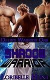 Shadow Warrior (Delroi Warrior Book 1)