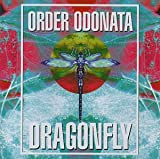 Order Odonata: The Technical Use of Sound in Magic