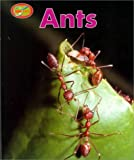 Ants Sb-Minipets (0739821938) by Greenaway, Theresa