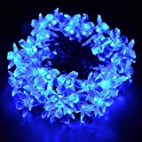 DLLL Blue Solar Fairy String Lights 10m/33ft 60 LED Blossom Decorative Gardens for Christmas,Partys,Wedding,New Year,garden,fence,patio,table,lawn,Indoor and Outdoor Decorations,etc.(Blue)