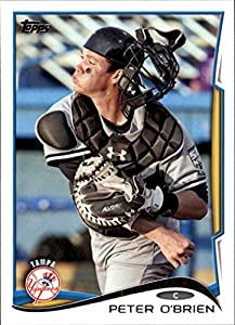 2014 Topps Pro Debut New York Yankees Team Set 9 Cards Greg Bird by Topps