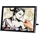 19 Inch Digital Pen Tablet Monitor Graphics Display