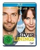 Platz 9: Silver Linings [Blu-ray]