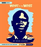 What Is the What: The Autobiography of Valentino Achak Deng; A Novel